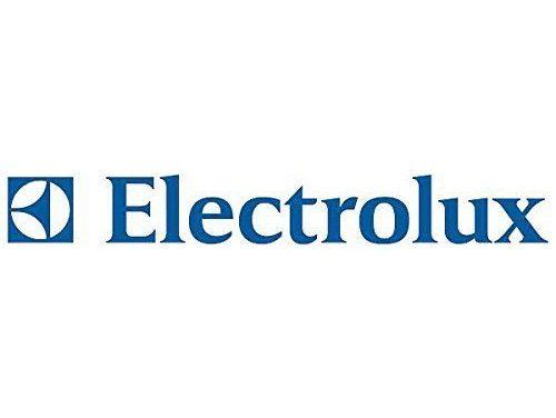 ELECTROLUX ASSUME A TEMPO INDETERMINATO